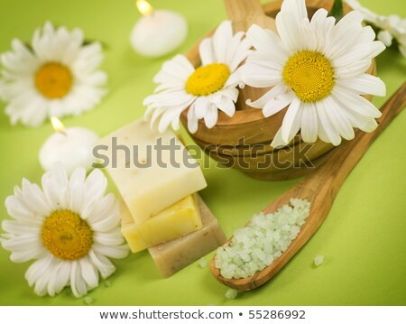 camomile made from bath salt Stock photo © Discovod