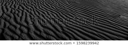 Stock photo: background texture sea coast wind sand waves