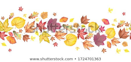seamless background with autumn leaves stock photo © ekapanova