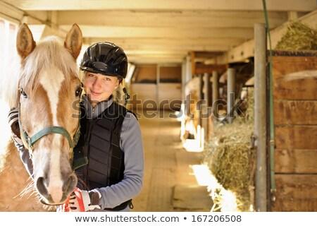 Jeune femme écurie cheval soleil souriant soleil Photo stock © Kzenon