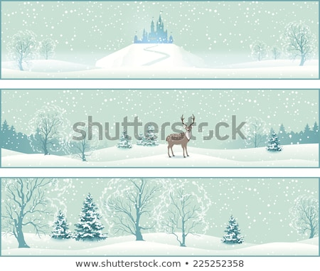Stock photo: Castle on the hill covered with snow.