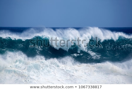 heavy waves with white wave crest in storm  Stock photo © meinzahn