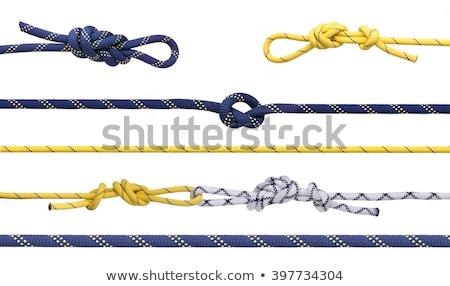 klimmen · touw · geïsoleerd · witte · veiligheid · Blauw - stockfoto © wime