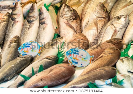 Red porgy fish for sale Stock photo © elxeneize