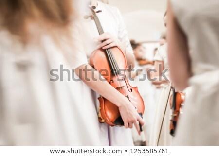 Hegedűművész koncert illusztráció hegedű Stock fotó © adrenalina