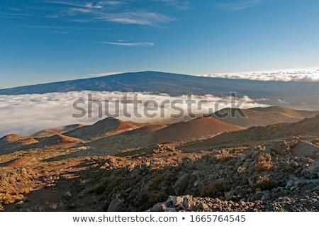 mauna loa volcano view stock photo © jarin13