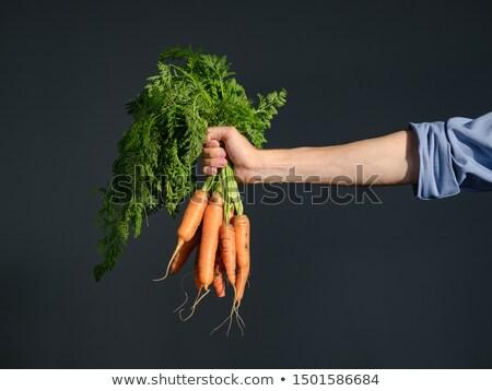 фермер · Постоянный · грабли · стороны · продовольствие · джинсов - Сток-фото © klinker