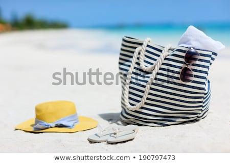 Nyár táska tengerpart modern illusztráció nő Stock fotó © vectorikart