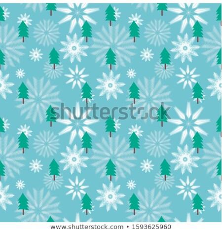 Díszes virágmintás hópelyhek végtelen minta végtelen absztrakt Stock fotó © balabolka