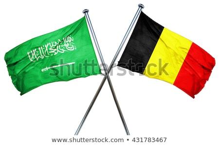 Suudi Arabistan Belçika bayraklar bilmece yalıtılmış beyaz Stok fotoğraf © Istanbul2009