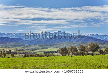 landscape with fields in the atlas mountains stock photo © meinzahn