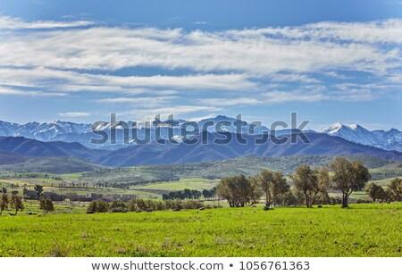 Landschap velden atlas bergen blauwe hemel zonsondergang Stockfoto © meinzahn