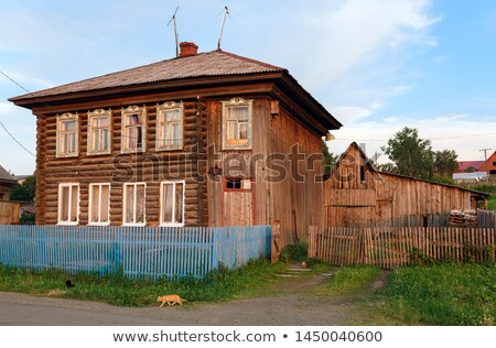 Old shabby cat on a wooden fence stock photo © Phantom1311