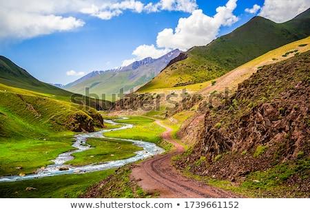 Berg kreek wolken landschap ontspannen najaar Stockfoto © zurijeta