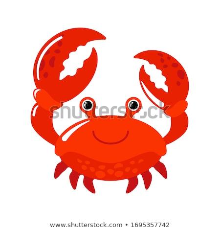 Red cartoon crab icon Stock photo © adrian_n