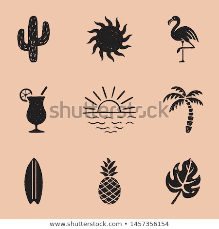 tropical icons. Stock photo © mangsaab