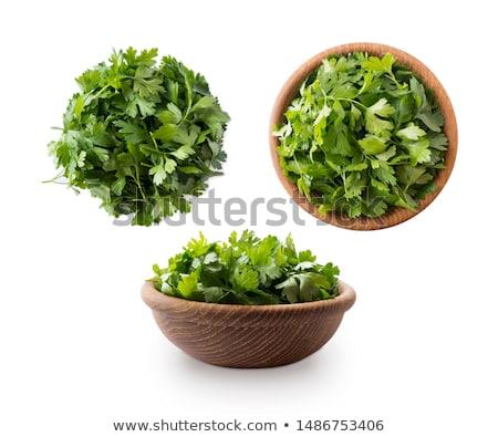 パセリ 白 鮮度 緑 草 葉 ストックフォト © cosma