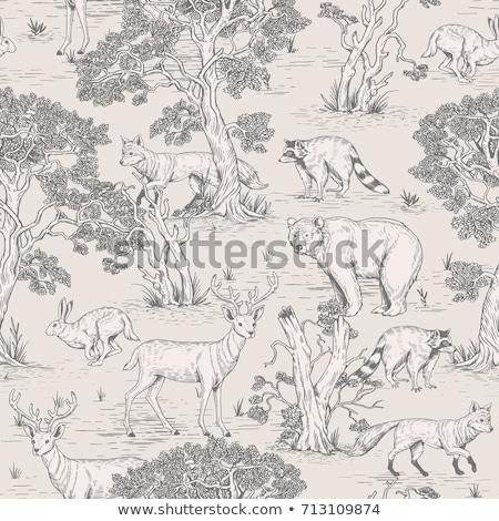 Floresta padrão simplificada árvores montanhas Foto stock © Soleil