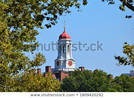 Church steeple with weather vane Stock photo © njnightsky