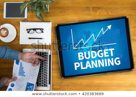 financial management on office binder blurred image stock photo © tashatuvango