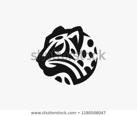 Ikona leopard ilustracja uśmiech lasu charakter Zdjęcia stock © adrenalina