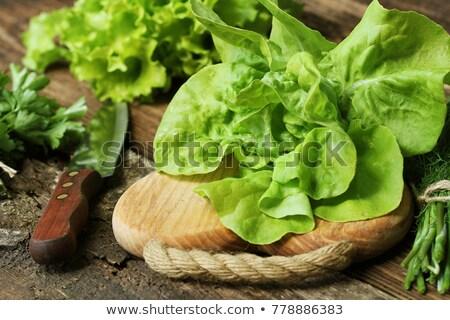 Surowy zielone organiczny masło sałata gotowy Zdjęcia stock © Virgin