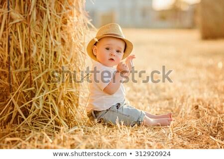 Baby jongen vergadering hooiberg zomer glimlachend Stockfoto © IS2