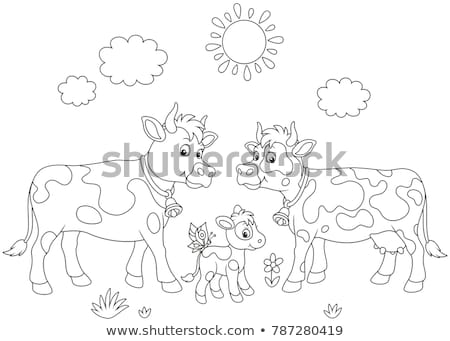 cow coloring book vector illustration of farm animals stock photo © popaukropa