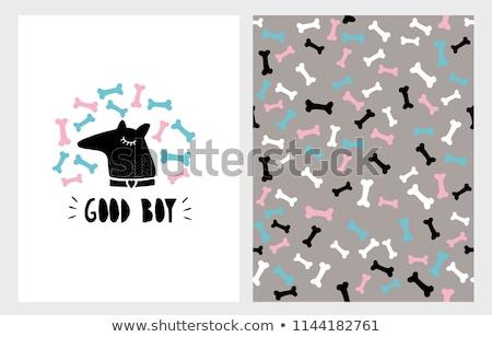 Blauw dog bone cartoon tekening eenvoudige ontwerp Stockfoto © hittoon