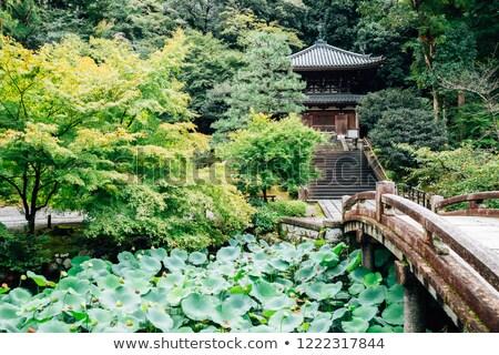 Templo jardim lagoa ponte quioto Japão Foto stock © daboost