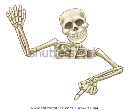 Хэллоуин · скелет · указывая · вниз · иллюстрация · Cartoon - Сток-фото © krisdog