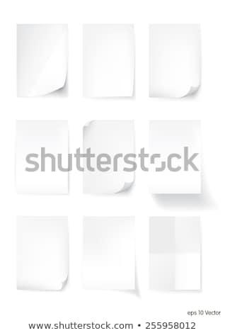 caderno · tamanho · realista · spiralis · vetor · isolado - foto stock © kyryloff