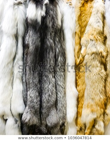 Foto stock: Dark Marble Artic And Red Fox Furs