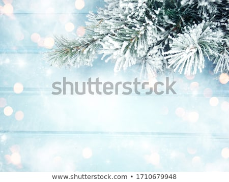 wooden blue frame with snow stock photo © romvo