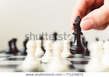 Oynama satranç farklı parçalar tahta savaş Stok fotoğraf © bdspn