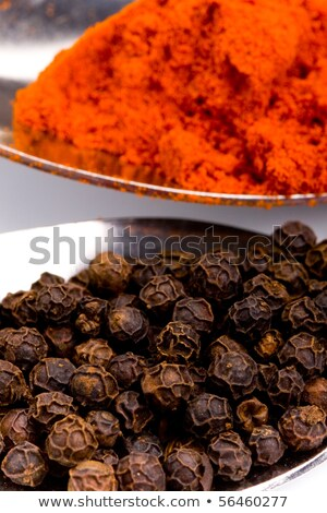 Black Pepper Powder On Silver Spoon Isolated Stock photo © ThreeArt