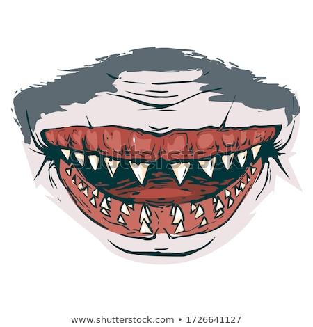 Zwierząt gryzmolić ryb ostry zęby Zdjęcia stock © colematt