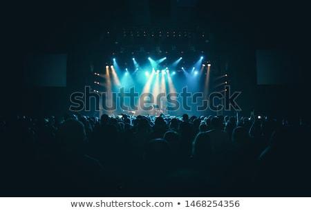 közönség · színpad · világítás · boldog · tömeg · koncert - stock fotó © robuart