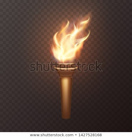 vector set of torch Foto stock © olllikeballoon