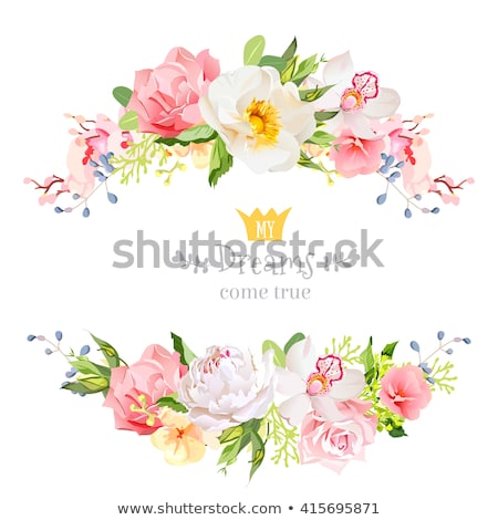 Roses floral banner with spring wishes Stock photo © shawlinmohd