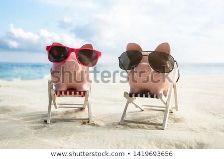Dwa miniatura krzesła plaża piaszczysta okulary różowy Zdjęcia stock © AndreyPopov