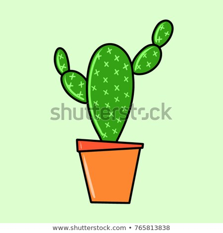 Color Decorative Houseplant Cactus Hand Drawn Vector Stock photo © pikepicture
