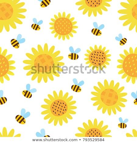 honingbij · zonnebloem · bee · bloem · natuurlijke - stockfoto © anna_om