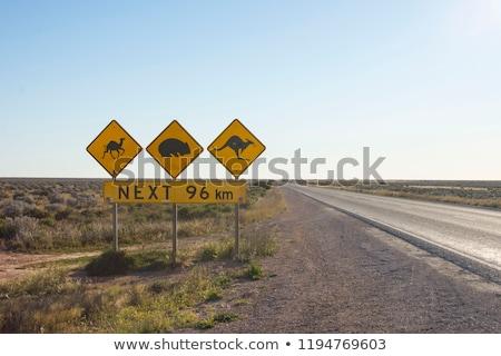 Australian outback landscape Stock photo © lovleah