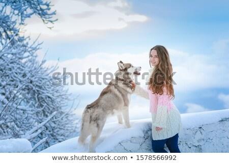 Jonge vrouw samen hond boom landschap sneeuw Stockfoto © ElenaBatkova
