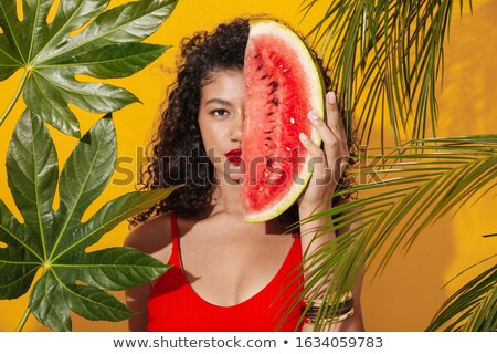 Tropical plant over yellow wall background. Stock photo © deandrobot