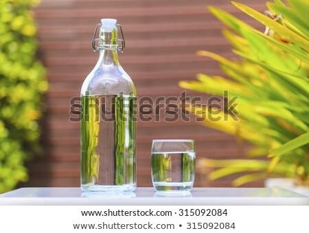 Fresco frio água mineral garrafa vidro tabela Foto stock © juniart