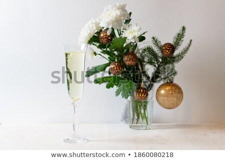ongebruikelijk · Geel · paars · rozen · geïsoleerd · witte - stockfoto © mikko