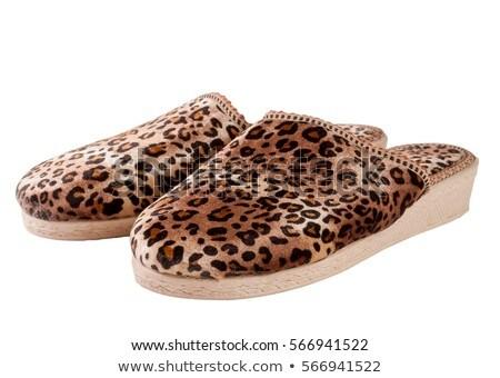 New leopard shoe. Isolated on white background. Stock photo © moses