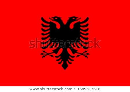 Bandera Albania ilustración diseno arte Foto stock © claudiodivizia